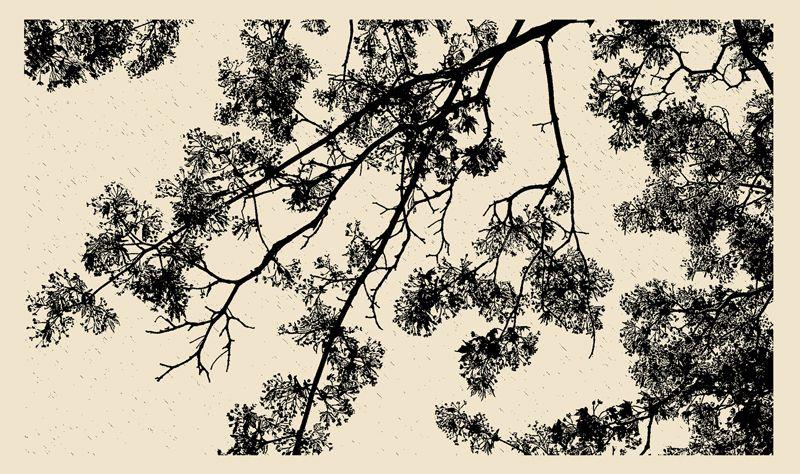 Ленинградская область, трасса, Временной предел прочности 2