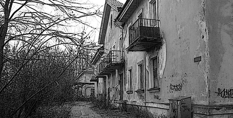 Ленинградская обл. дом