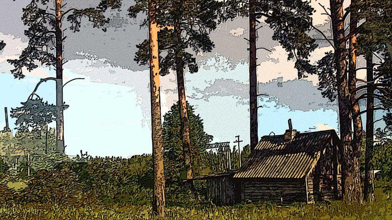 Деревня под Питером
